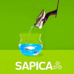 SAPICA PRIMAVERA-VERANO
