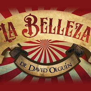 LA BELLEZA, DE DAVID OLGUÍN
