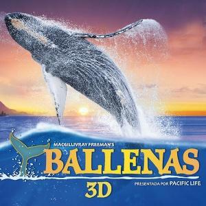 Ballenas 3D IMAX