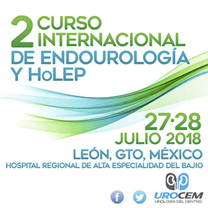 2Do. CURSO INTERNACIONAL DE ENDOUROLOGÍA Y HOLEP