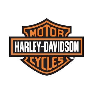 RALLY HARLEY DAVIDSON HOG
