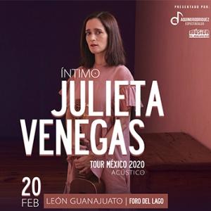 Concierto Julieta Venegas