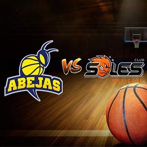 ABEJAS VS SOLES